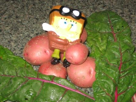 Still life with potatoes, chard, and Sponge Bob