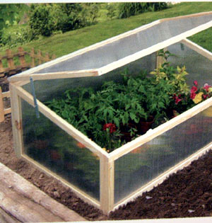 The kind of cold frame that you can make yourself!